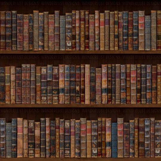 Uma biblioteca infinita