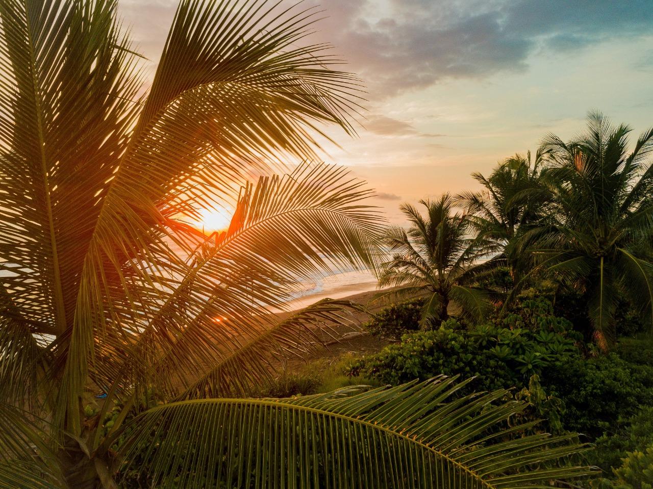 "Viva a ""pura vida"" da Costa Rica"