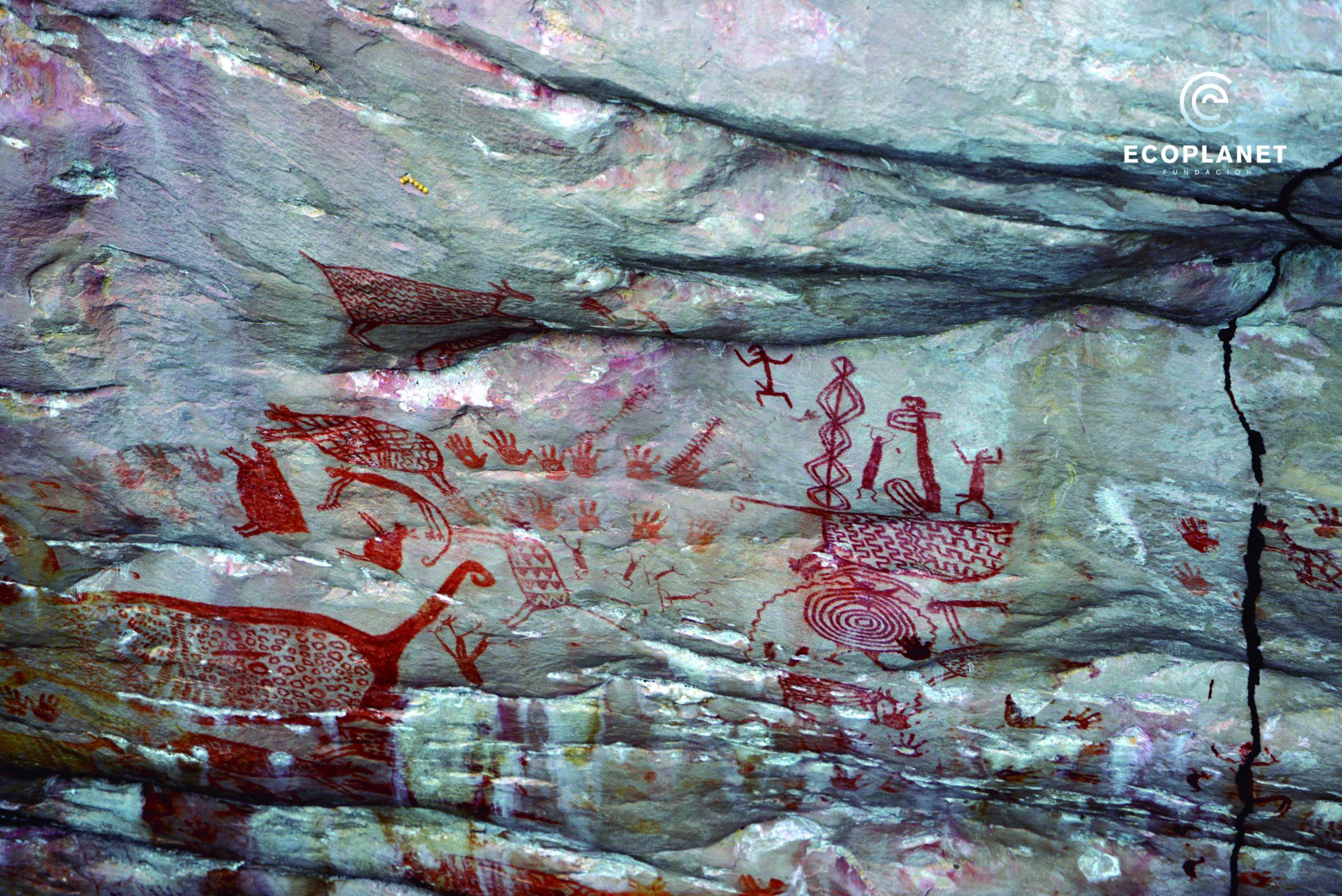 Nova descoberta na Amazônia Colombiana