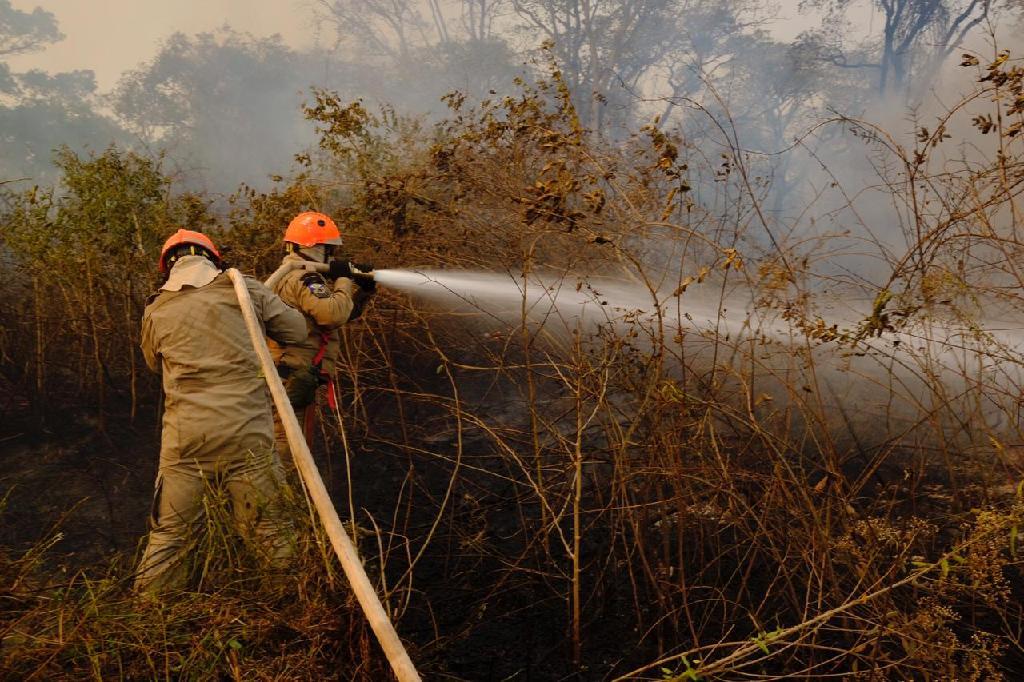 Mato Grosso dobra estrutura para combater incêndios florestais