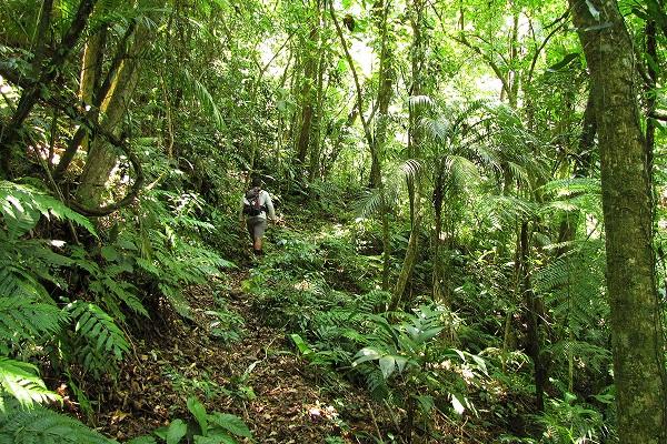 Governo organiza expansão do turismo de trilhas no país