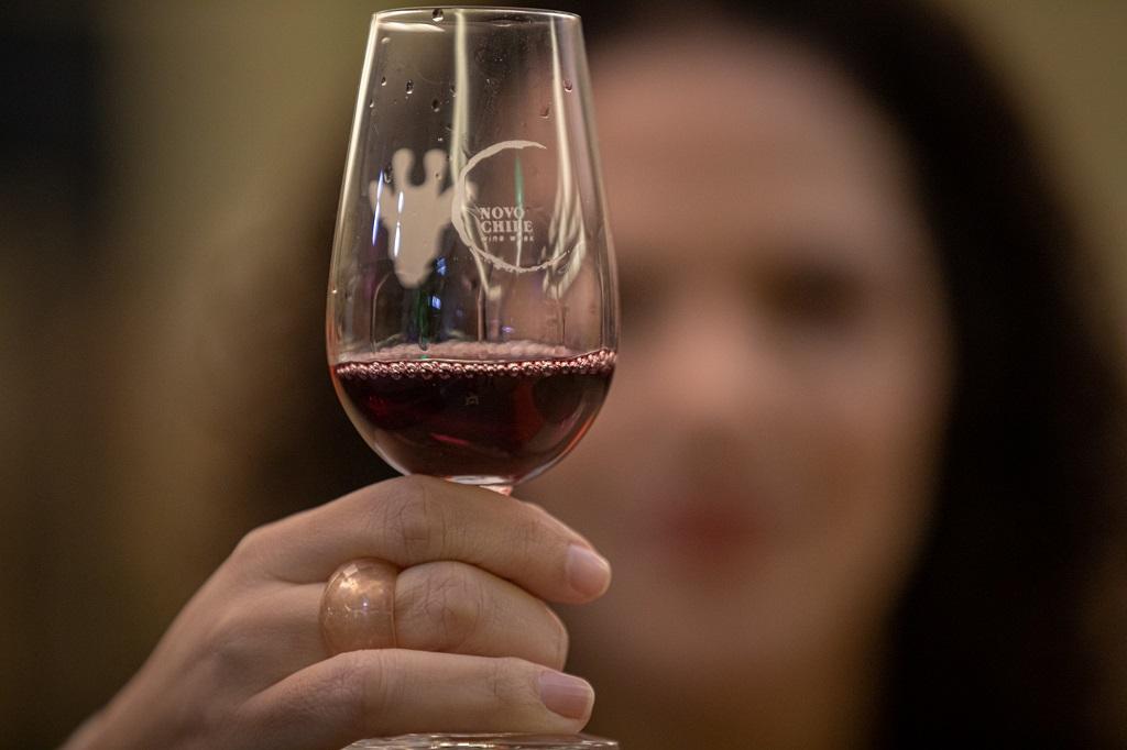 Conheça 8 vinícolas do Chile com enólogos on-line