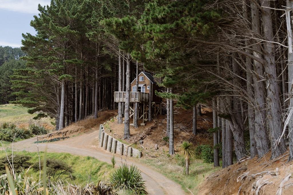 Casas para viver no estilo kiwi na Nova Zelândia